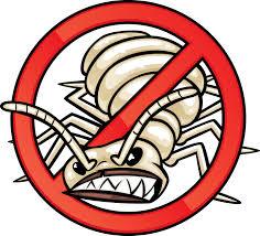 Image of Termite Control